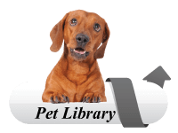 Click to check out the Pet Library from Veterinary Partner!